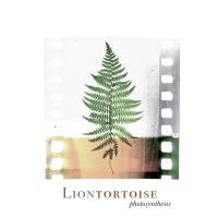 LionTortoise – Photosynthesis [EP]